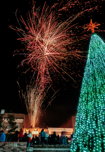 Christmas Tree with Fireworks in background